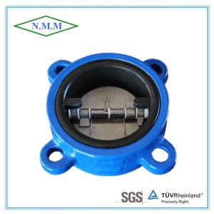 Cast Iron Rubber Coated Double Disc Swing Check Valve pictures & photos