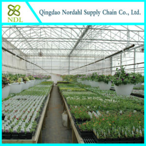 Cheap Farm Equipment Plastic-Film Greenhouse pictures & photos