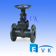 API602 Forged Steel Flange Gate Valve with Class1500