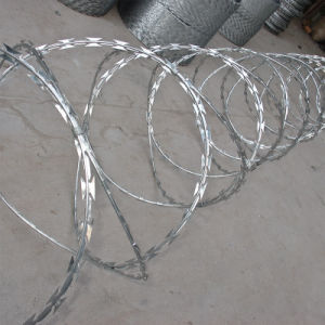 Galvanized Hot Sale Razor Wire (factory) pictures & photos