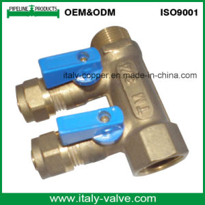 OEM&ODM Quality Brass Forged 2-Way Manifold (AV9068) pictures & photos
