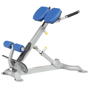 Ce Certificated Hoist Gym Equipment Roman Chair (SR1-19) pictures & photos