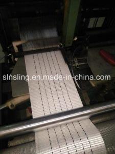 En Standard 5t Webbing Material pictures & photos