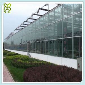 Gutter Connect Multi-Span Glass Green House pictures & photos