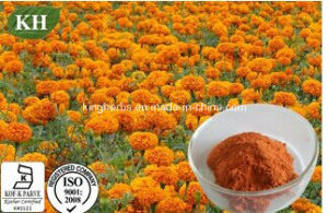 Natural Organic Zeaxanthin 2%~60% by HPLC; Marigold Extract pictures & photos