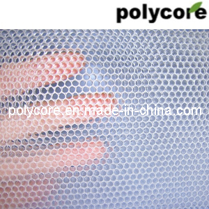 Transparent Honeycomb Panel pictures & photos