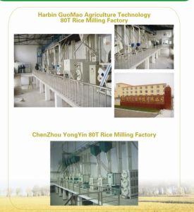 Rice Milling Plant Series CTNM60/80 pictures & photos