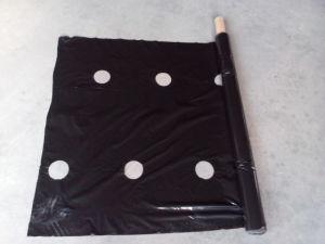Perforated Plastic Sheet Plastic Mulch Film