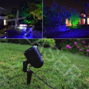 Red&Blue Static Pinte Laser Light /Garden Laser/Waterproof Laser Light pictures & photos