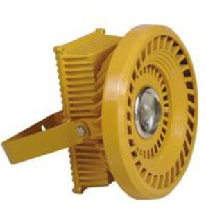 Explosion-Proof LED Flood Light 30W pictures & photos