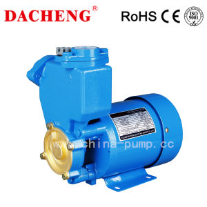 Hot Sales Peripheral Water Pump pictures & photos