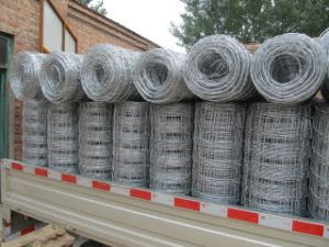 Galvanized Iron Knotted Wire Mesh pictures & photos