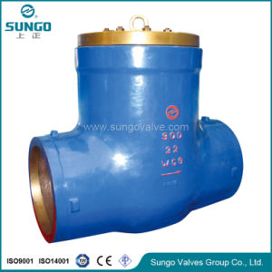 Swing Check Valve Class300 pictures & photos