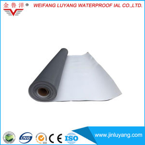Polyvinyl Chloride PVC Waterproofing Membrane for Tunnel pictures & photos