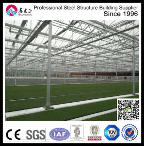 Commercial Polycarbonate Glass Greenhouse pictures & photos