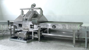 Oil Spraying Machine for Biscuits pictures & photos