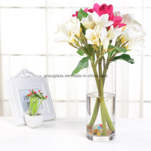 Square Transparent Decoration Glass Flower Vase pictures & photos