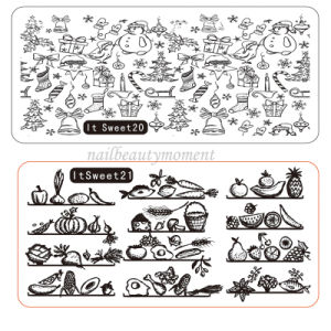 Manicure Beauty Nail Stainless Steel Image Stamping Plates (SNA21) pictures & photos