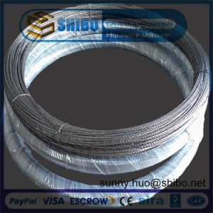 Export High Purity High Quality Tungsten Filament/ Tungsten Wire pictures & photos