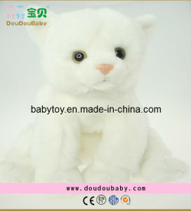 2014 Hot Selling Cute Plush Cat Toys