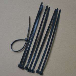 Cable Tie Self-Locking pictures & photos