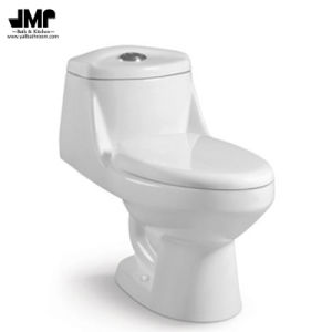 Siphonic Bathroom Wc Dual Flush One Piece Ceramic Toilet pictures & photos