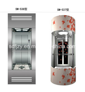 FUJIZY Glass Home Elevator pictures & photos