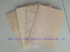 18mm Furniture/Packing Grade Plywood pictures & photos