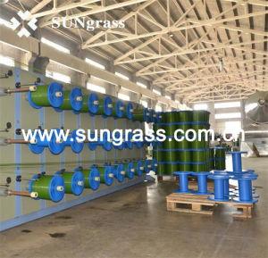Sports Football Artificial Grass Carpet (JDS-50-J) pictures & photos