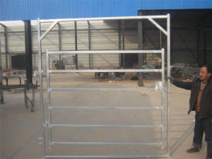 Heavy Duty Welded Oval Tube Cattle Gate pictures & photos