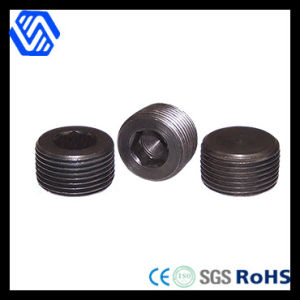 Steel Hexagon Socket Pipe Plugs (DIN 906) pictures & photos