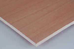 Okoume Bintangor Faced Poplar Hardwood Combi Core Commercial Plywood pictures & photos