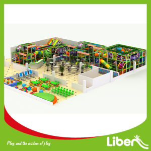 Novel Design Indoor Playground with Jungle Gym pictures & photos