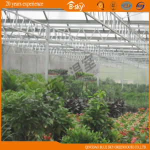 China Supplier Multi-Span Venlo Type Glass Greenhouse pictures & photos