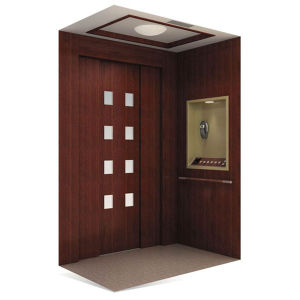 200kg Home Elevator in China pictures & photos