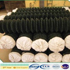 Anping Supplier PVC Coated Chain Wire Fencing (XA-CLF21) pictures & photos
