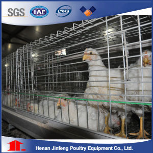 2-5 Tier Poultry Farm Battery Layer Chicken Cage (A Frame) pictures & photos