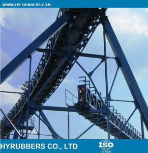 Chinese Imports Wholesale Conveyor Belt pictures & photos