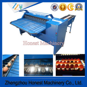 Automatic 5/7 Level Egg Sorter / Best Egg Sorting Machine pictures & photos