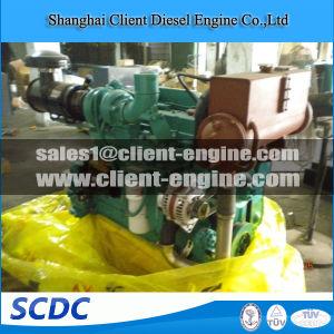 Brand New Cummins 4bt3.9 6bt5.9 6CT8.3 Genuine Diesel Engine pictures & photos