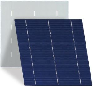 Top Quality 6 Inch Poly Solar Cell with Lowest Price pictures & photos