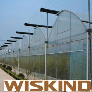China Low Cost Single Span Plastic Film Greenhouse pictures & photos