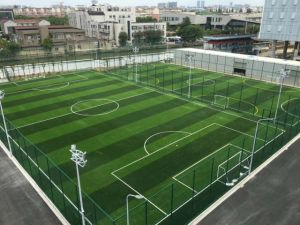 Football Field with W-Shape Monofilament Yarn Artificial Turf pictures & photos