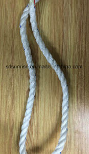 Premium Quality Polyester Mixed PP Ropes for USA Market pictures & photos