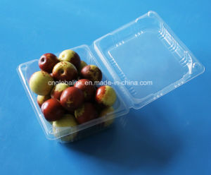 Disposable Plastic Fruit Containers Strawberry Blueberry Clamshells pictures & photos