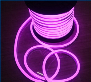 Mini LED Neon Flex pictures & photos