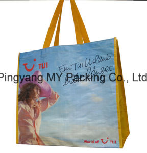 Shopper Bag for Carrying in Supermarket Laminated PP Promotion Bag pictures & photos