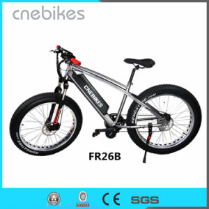 High Power 26 Inch Electric Fat Tire Snow Beach Bike pictures & photos