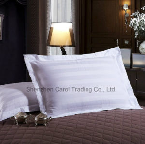 100% Cotton 300tc 1cm Stripe Hotel Textile Hotel Bed Linen pictures & photos