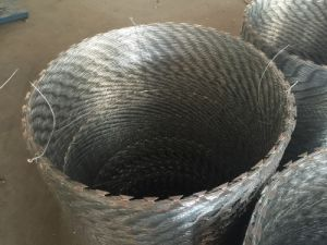 Bto22 Hot Dipped Galvanized Razor Wire Mesh pictures & photos